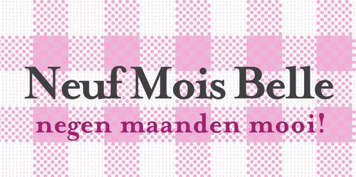 Anticipeer zwangerschapsvragen met gepersonaliseerde zwangerschapsshirts van Neuf Mois Belle