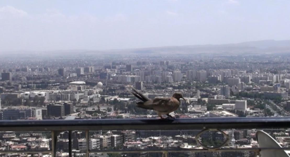 Teug naar Damascus - (c) De Chinezen