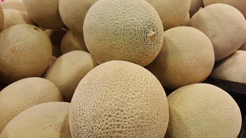 Governor Polis to Proclaim Wednesday, August 7 Rocky Ford Cantaloupe Day in Colorado