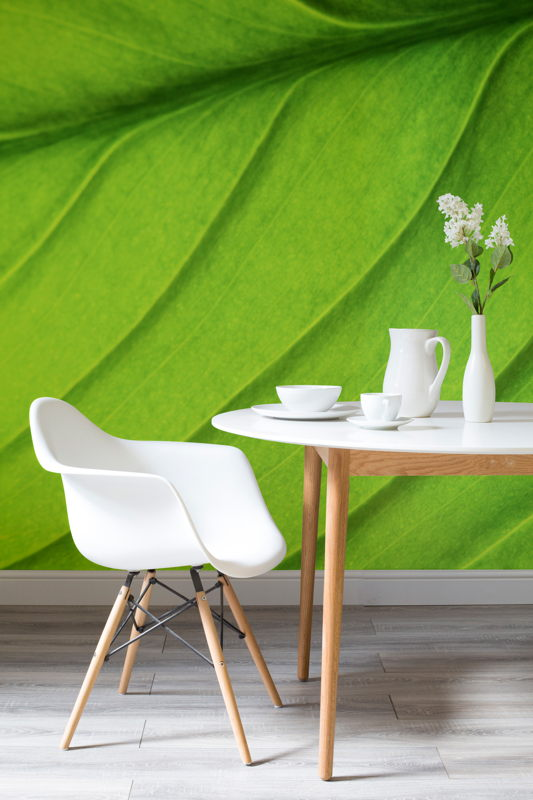 Giant Leaf Wall Mural