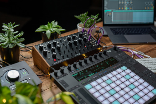 Watch 5 New Synthesizer Videos from the Moog Demo Library focusing on Ableton's New CV Tools for Live