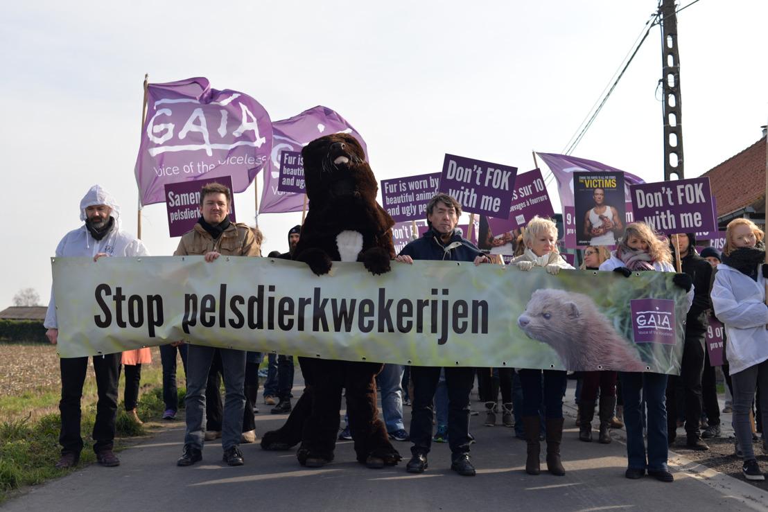 Nertsenkweker in Langemark stopt ermee!