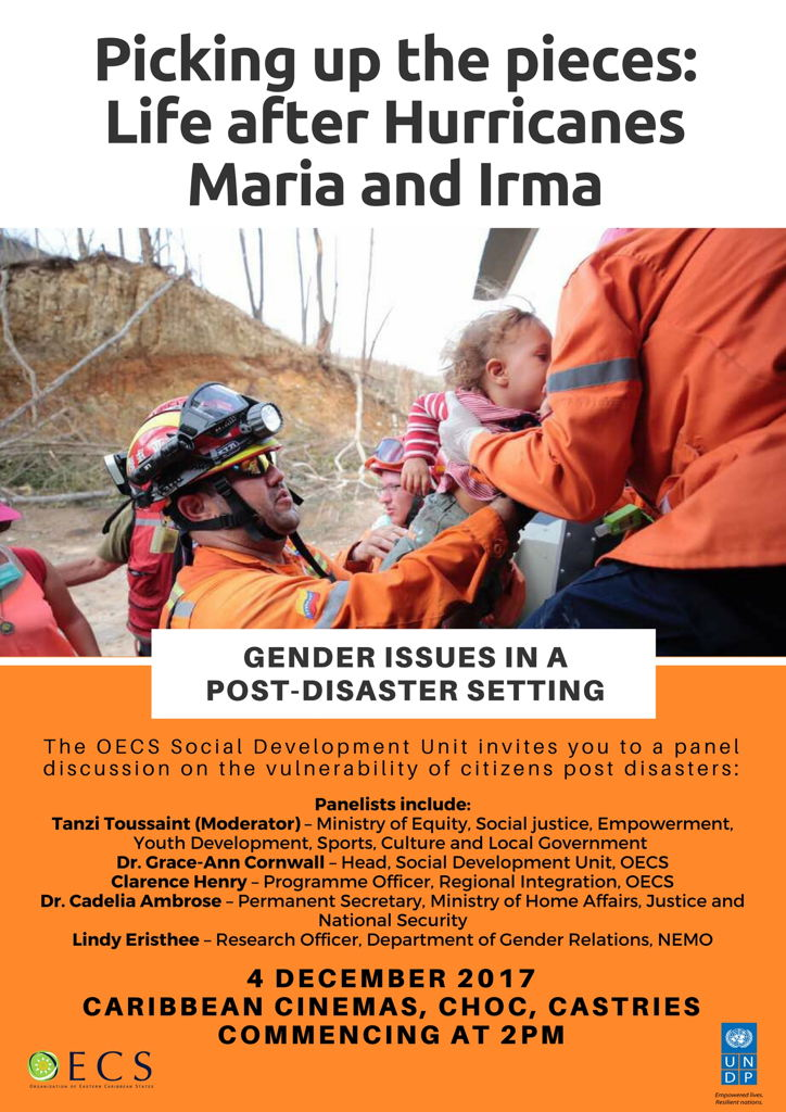 Flyer - Panel on Gender Issues in a Post-Disaster setting