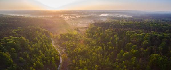 Preview: Vlaanderen maakt ruimte voor natuur: start zoektocht naar drie extra Nationale Parken en drie Landschapsparken