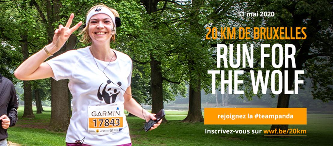 20km de Bruxelles – Le WWF appelle à courir pour le loup en Belgique