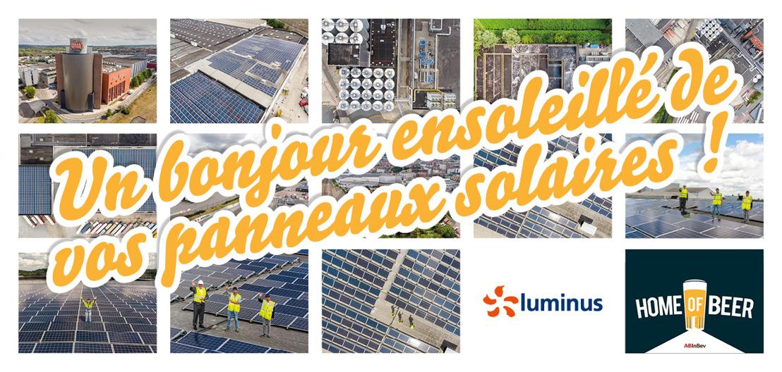 30 millions de bières brassées chaque année à Louvain grâce à une énergie solaire locale et l'investissement des citoyens