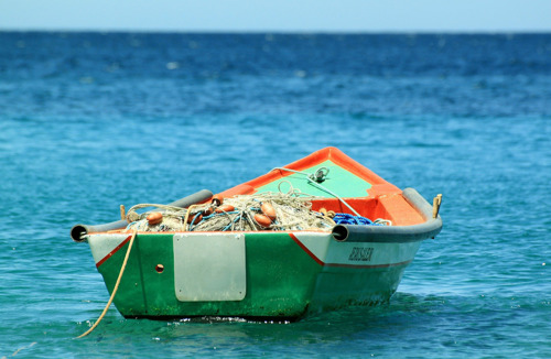 OECS works toward securing a beneficial outcome on Fisheries Subsidies