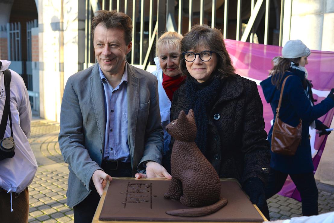 Verplichte sterilisatie van alle huiskatten in Wallonië: GAIA bedankt Waalse regering voor nieuwe wetgeving – praktisch uniek in de wereld - tegen de overpopulatie van katten