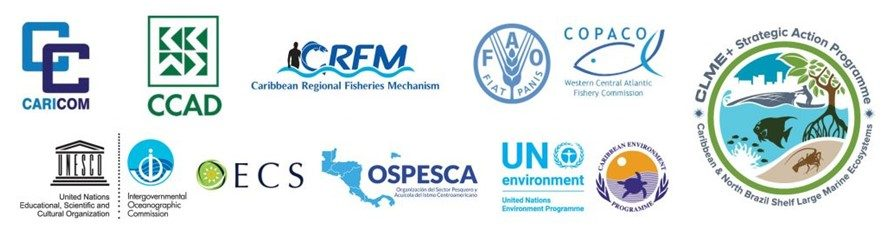 The eight organisations which are expected to sign the agreement.