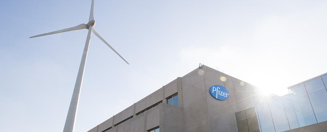 Pfizer Puurs zoekt 250 nieuwe werknemers