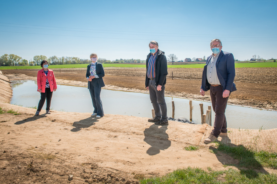 Bufferzone met aarden dam aan Kwalijkstraat in Scherpenheuvel-Zichem