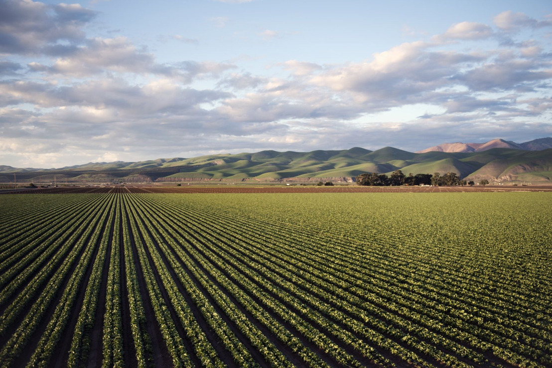 Reactie van WWF op het IPCC-rapport over landgebruik: 'We moeten ons voedselsysteem aanpassen als we de klimaatcrisis willen beperken.'