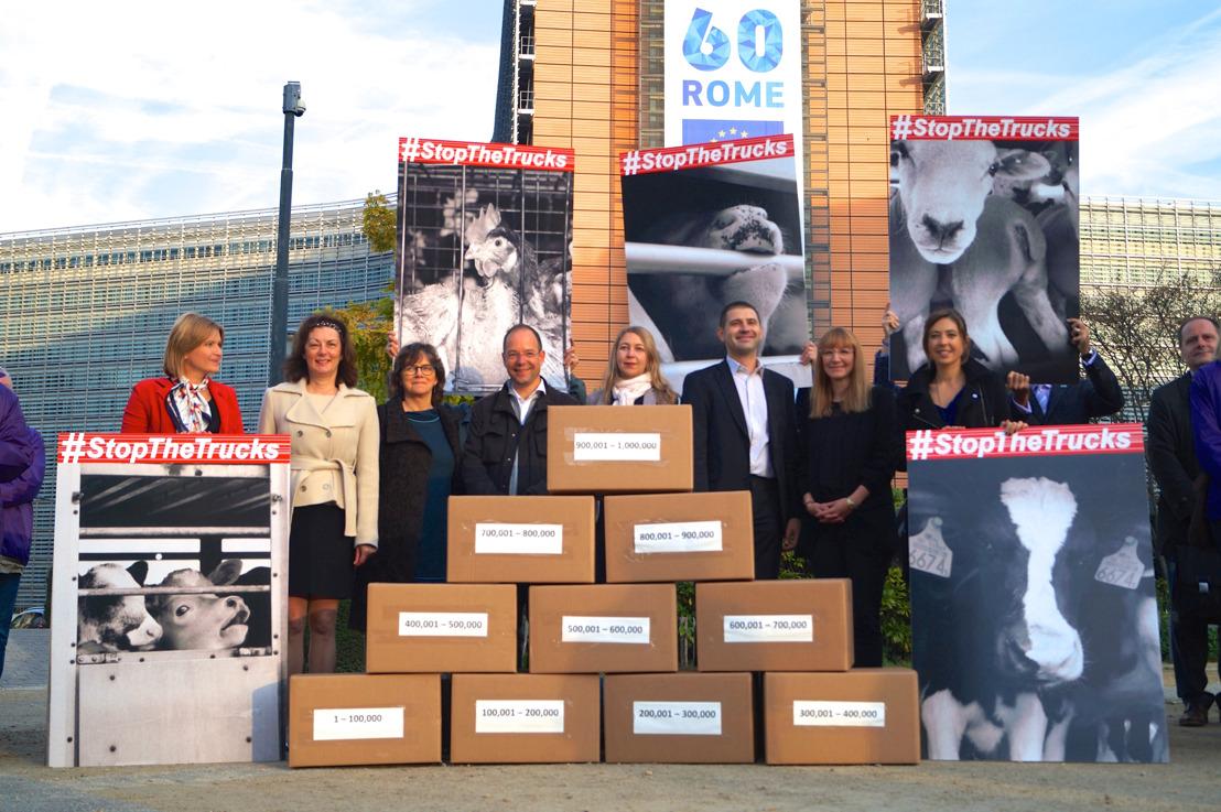 GAIA remet 1 069 715 signatures à la Commission européenne pour mettre fin aux transports longues distances d'animaux vivants