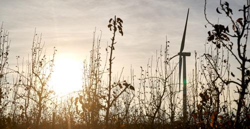 Preview: Un projet de 7 nouvelles éoliennes sur les communes d'Onhaye et de Hastière