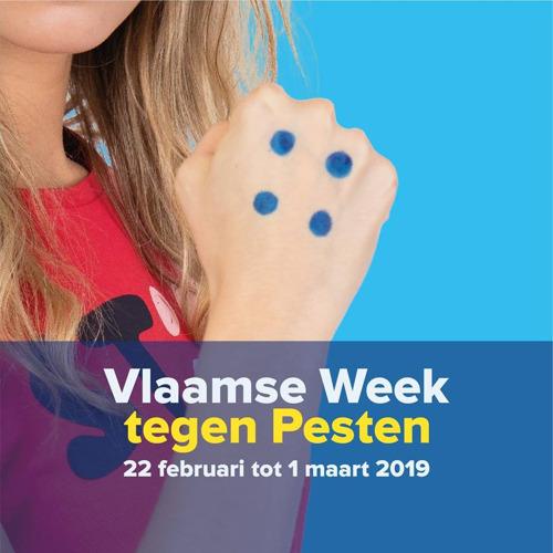Integrale aanpak van Vlaamse Regering tegen pesten en geweld