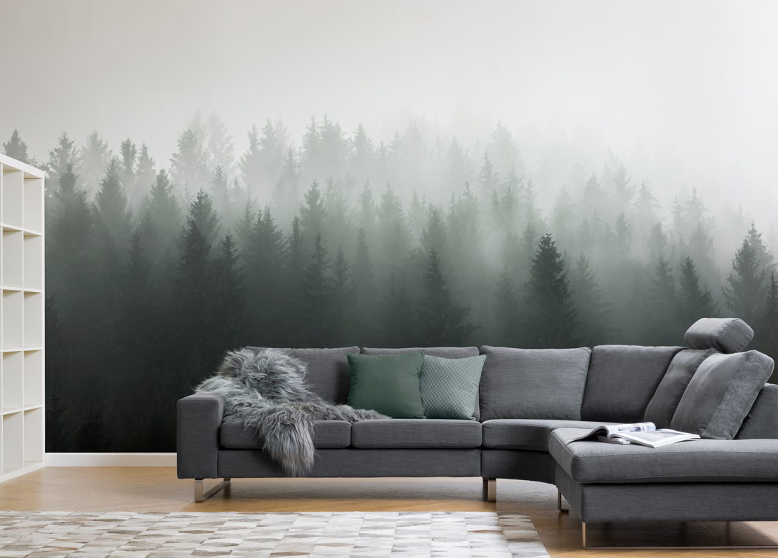 Deep Green Ombre Forest Wall Mural